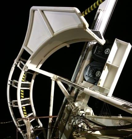 2 lieren ingezet voor project Westermeerwind